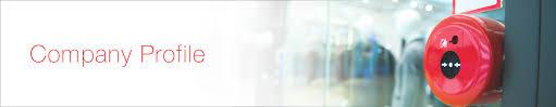 Company Profile | San Infotech Services