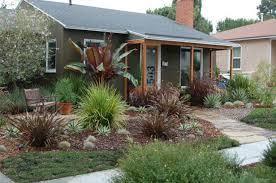 Small Picture Awesome Drought tolerant garden saving the and keeping
