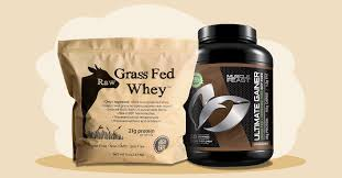 the 11 best whey protein powders for 2021