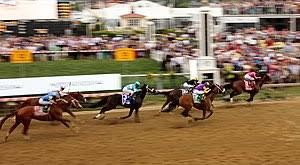 2019 Preakness Stakes Wikipedia