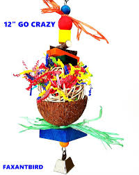 bird toy parrot cage toys go crazy for atoo african grey mini macaw quaker size 12 this is fun magnet