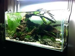 fish tank lighting ideas. Half Fish Tank Lighting Ideas