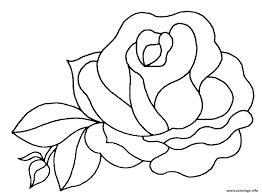 Coloriage Fleur De Rose Dessin