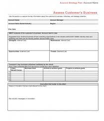 Strategic Account Plan Template Excel Templates Mtm5otg