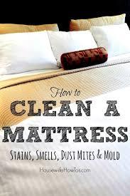 Best 25+ Clean a mattress ideas on Pinterest | How to clean ...