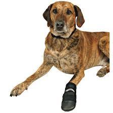 Обувь для собак <b>Trixie Walker XXL</b>, черный - Интернет ...