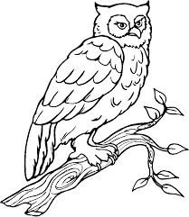 Dessins De Coloriage Oiseau Imprimer Imprimerlll