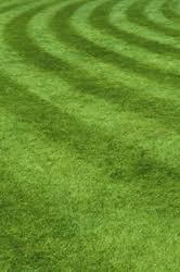 lawn care cincinnati. Exellent Cincinnati Lawn Care Cincinnati On