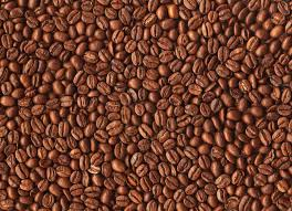 coffee beans background. Plain Background Coffee Bean Background  Viewing Gallery To Beans W