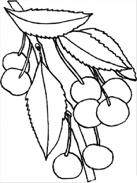 Small Picture cherry blossom coloring pages cherry blossom coloring pages
