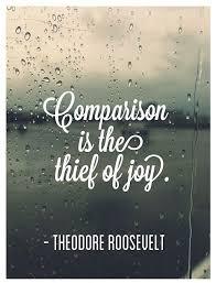 Comparison Quotes Classy 48 Comparison Quotes QuotePrism
