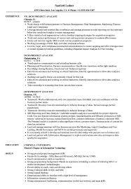 Dcm Project Analyst Resume Samples Velvet Jobs