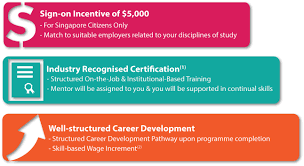 skillsfuture earn and learn programme temasek polytechnic 1 the industry recognised qualifications certificates will vary from sector to sector and from job to job they include singapore workforce skills
