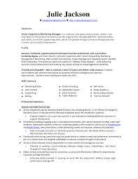 Monster Resume Samples Amazing 92 For Your Objective Examples