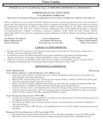 senior it manager resume sample experience resumes gallery of senior it manager resume sample