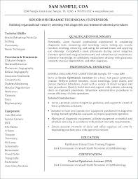 Resume For It Technician Resume Layout Example Resume Template
