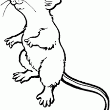 Small Picture Mice Coloring Pages Cute Wood Mouse Page adult