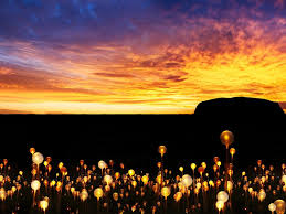 Field Of Light Uluru Free Field Of Lights Event At Uluru
