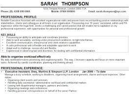 Cv Personal Profile Examples Uk