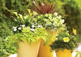 Container Vegetable Gardening Plans  Home Decorating Interior Container Garden Plans Pictures