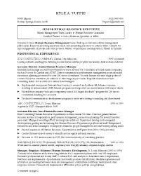 ... Job Resume, Resume Writing Help For Senior Human Resource Executive And  Professional Experience Free Download ...