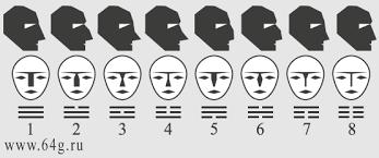 Physiognomy Of Nose Shapes