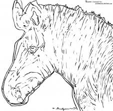 Small Picture Zebra By Andy Warhol free printable coloring page Famous Art