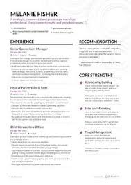 sales professional resume examples the best 2019 sales resume example guide