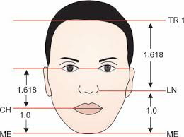 human face golden ratio ile ilgili görsel sonucu