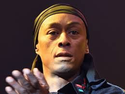 Public Enemy member Professor Griff named in Dallas Police Shooting  statement - Business Insider