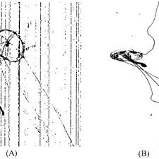 A Sipper Image Of A Jellyfish Using Previous Constant