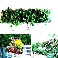 outdoor plant holders wall plant holders outdoor hanging plant holders outdoor plant holders outdoor wall mounted