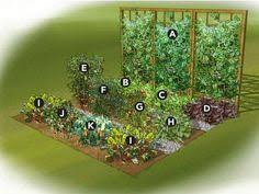 Small Picture How to Start a Backyard Vegetable Garden Hometalk Gardening