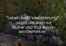 Leben Heißt Veränderung Sagte Der Stein Zur Blume Und
