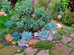 brazilian spirit garden design