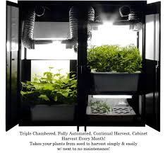 Small Picture 136 best DIY Garden Ideas images on Pinterest Garden ideas