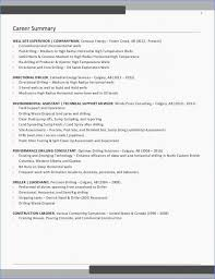 Rn Consultant Sample Resume Stunning Professional Summary Resume Examples Rn Resume Sample Unique