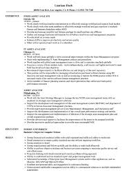 Asset Analyst Resume Samples Velvet Jobs