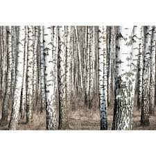 fabulous birch tree wall art canada 66 for with birch tree wall art canada on birch tree wall art canada with birch tree wall art canada catwallart