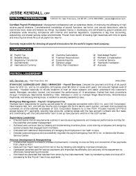 Resume For Finance Professional Resume Example 2018
