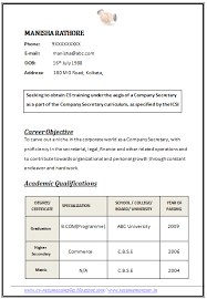 Professional Curriculum Vitae / Resume Template for All Job Seekers Sample  Template of an Excellent Company