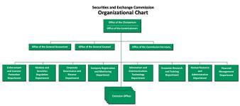 50 Studious Distributor Organizational Chart
