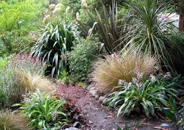 Small Picture Image result for nz native garden design ideas Garden NZ