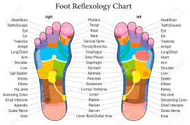 Foot Reflexology Chart With Accurate Description Of The Corresponding