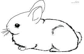 Easter Bunny Printable Coloring Pages Free Printable Bunny Colouring