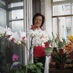 Ирина Кулакова (kulakova70) на Pinterest
