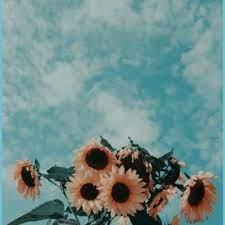 Wallpaper Tumblr Flowers Aesthetic ...