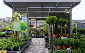 home and garden design. garden design with next home and retailsquare winter blooming plants from retailsquare.com