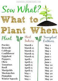 best time to plant a vegetable garden unique best time to plant vegetable garden best images best time to plant a vegetable garden