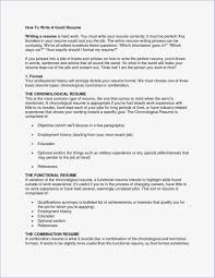 Professional Summary For Resume No Work Experience Elim